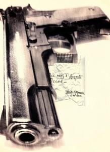 gun project